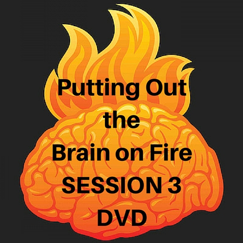 Brain on Fire SESSION 3 DVD